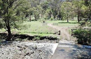 Picture of Lot 3 Halls Creek Road, Halls Creek, Bendemeer NSW 2355