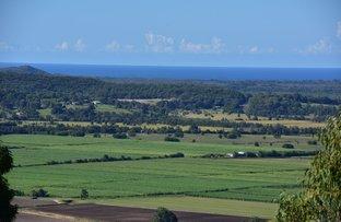 Picture of 721-761 Yandina Coolum Road, Yandina Creek QLD 4561