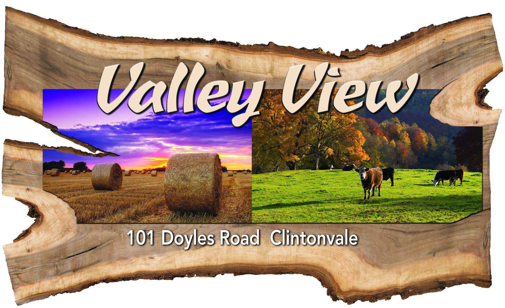 101 Doyles Road, Clintonvale QLD 4370, Image 1