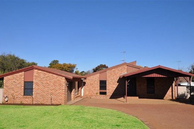Picture of 5 Elm  Place, FORBES NSW 2871