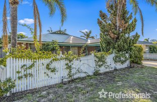 Picture of 7 Bougainvillea Court, Marangaroo WA 6064