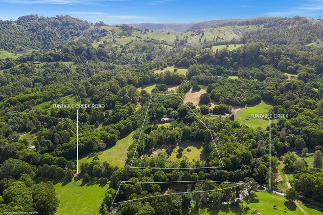 Picture of 453 Tuntable Creek Road, TUNTABLE CREEK NSW 2480