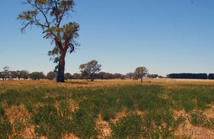 Picture of Lot 22 Hundred of Jessie, Naracoorte SA 5271
