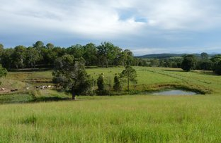 Picture of Lot 47 Cullinane Road, Mothar Mountain QLD 4570