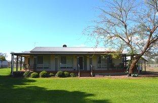 COTTAGE GWYDIR HIGHWAY, Moree NSW 2400