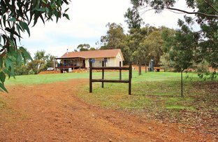 Picture of Lot 212 Leschenaultia Drive, Chittering WA 6084