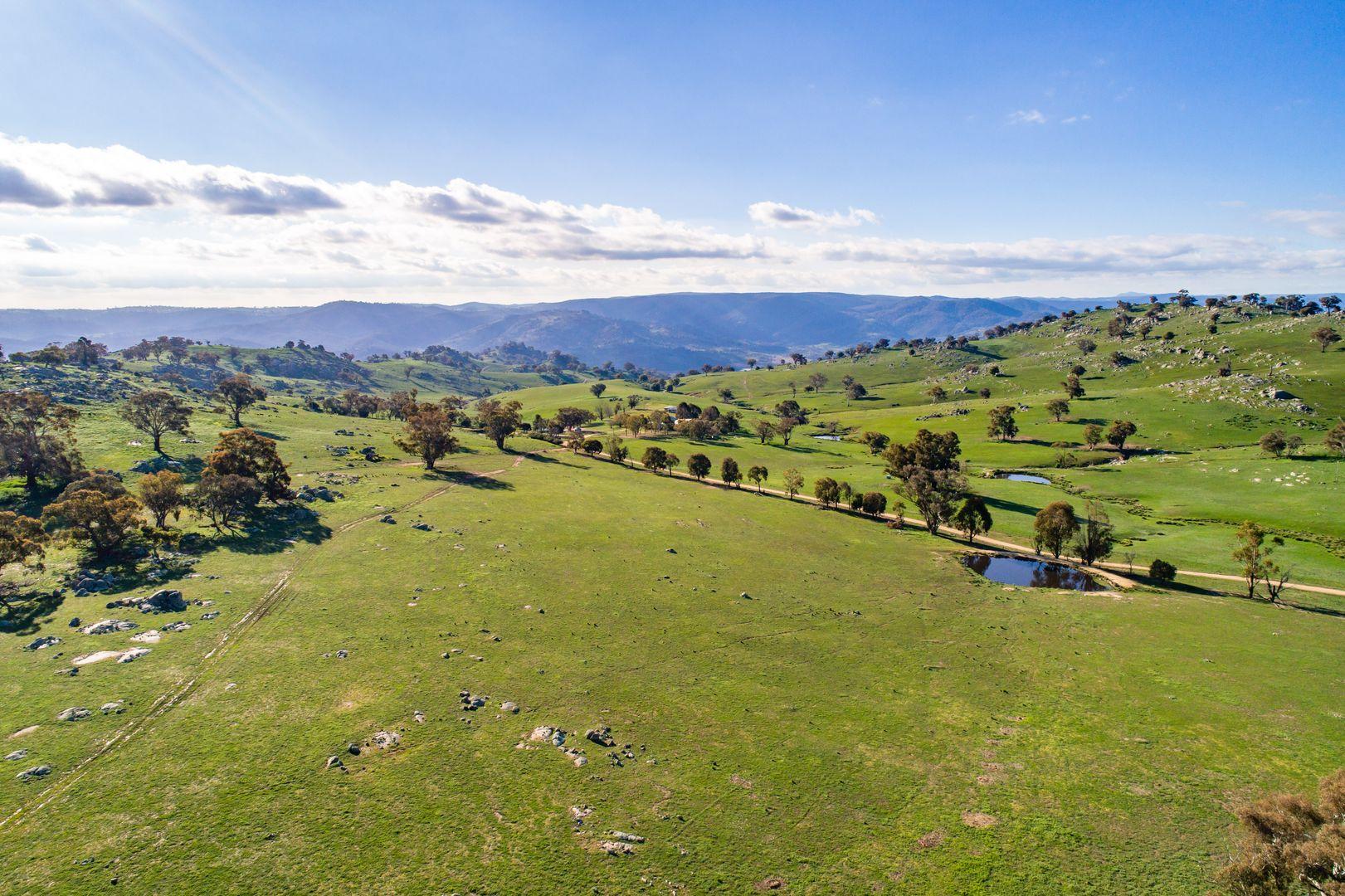 635 Decca Road, Bigga NSW 2583, Image 1