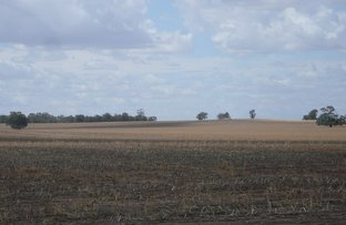 Picture of Coorong Swamp Road, Ashens, Murtoa VIC 3390