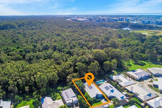 Picture of 6 Midyim Court, MERIDAN PLAINS QLD 4551