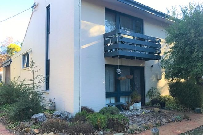Picture of 64A Templeton Street, COOK ACT 2614