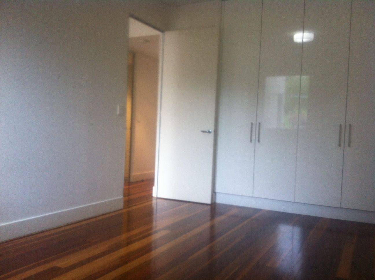 1/543 Crown Street, Surry Hills NSW 2010, Image 2