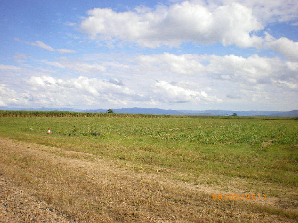 Lots 1, 3, 5 & 6 Cnr Abergowrie Roads & Scotts Roads, Lannercost QLD 4850, Image 0