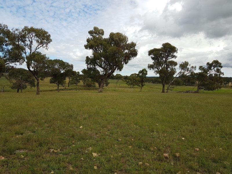 Culgoa/406 Bezzants Road, Deepwater NSW 2371, Image 0