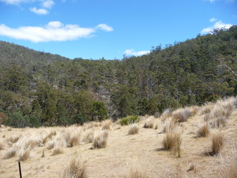 Lots 1-5, 3981 Tasman Highway, Orielton TAS 7172, Image 2