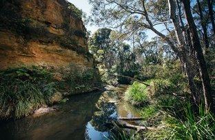 Picture of Eucalypt Lane, High Range NSW 2575