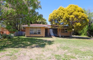 Picture of 144 River View Avenue, South Guildford WA 6055