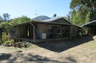 Picture of 3850 Taylors Arm Rd, Burrapine NSW 2447