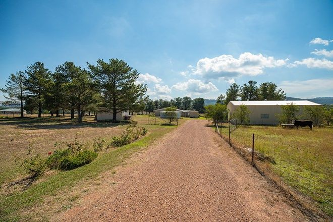 Picture of 475 Kains Flat Road, MUDGEE NSW 2850