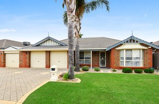 Picture of 12 Campbell Ave, Seaton SA 5023