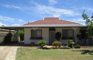 Picture of 17 Murray Avenue, Renmark SA 5341
