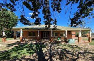 Picture of 1825 Rangemore Road, Wakool NSW 2710