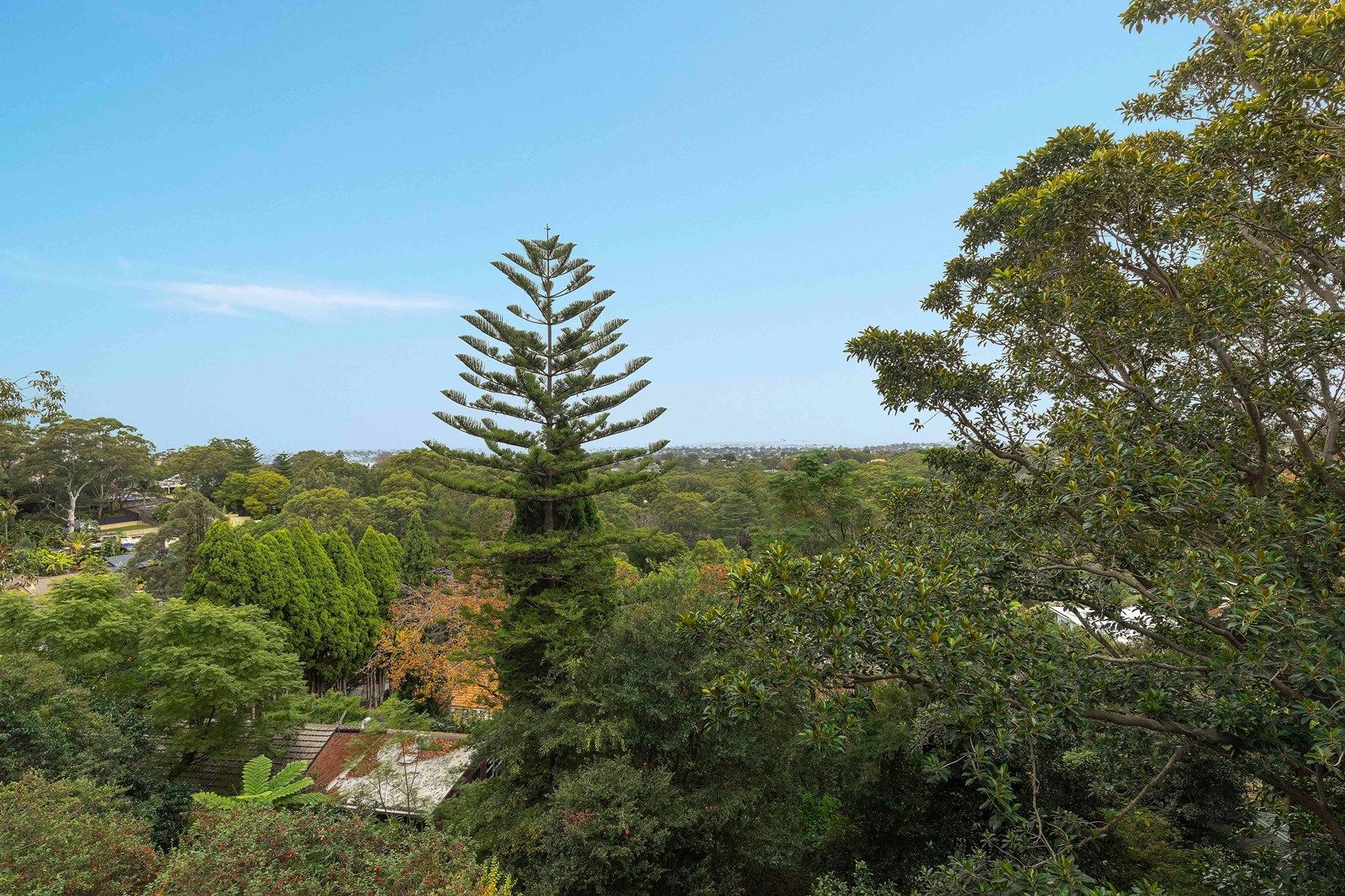 Unit 15/258 Pacific Hwy, Artarmon NSW 2064, Image 2
