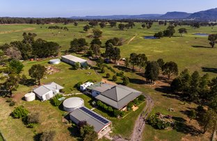 Picture of 285 Pyangle Rd, Camboon NSW 2849