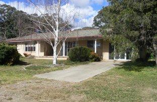 Picture of 'Wynona'/879 Furracabad Road, Glen Innes NSW 2370