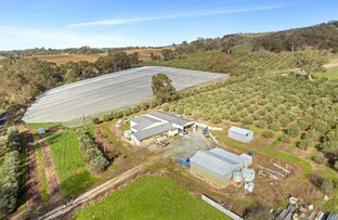 Picture of 718 Torrens Valley Road, Gumeracha SA 5233