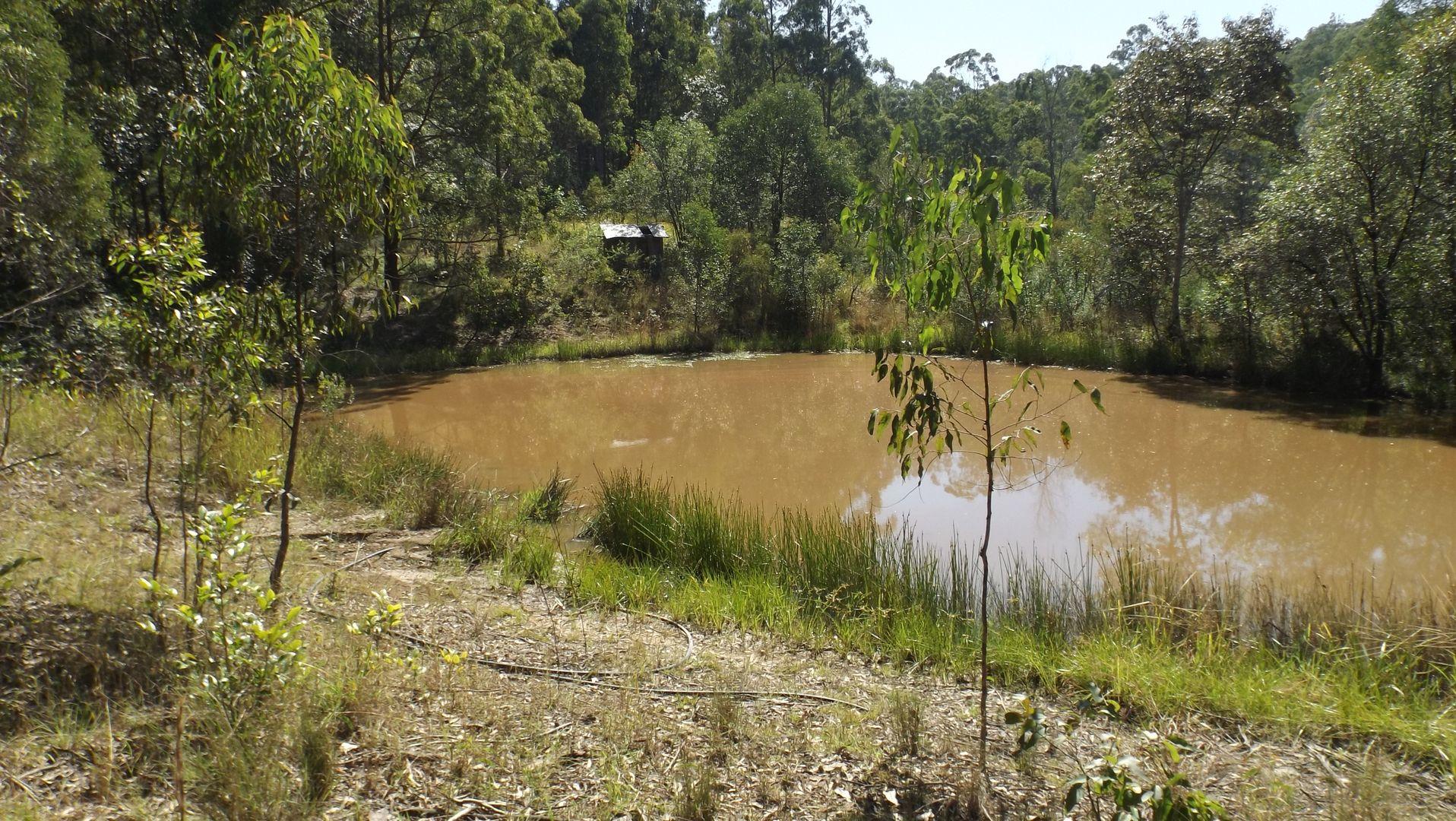 1464 Paddys Flat Road, Tabulam NSW 2469, Image 0
