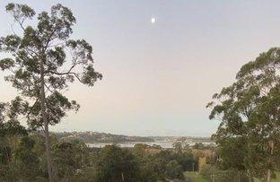 Picture of 43 Stringybark Place, Millingandi NSW 2549