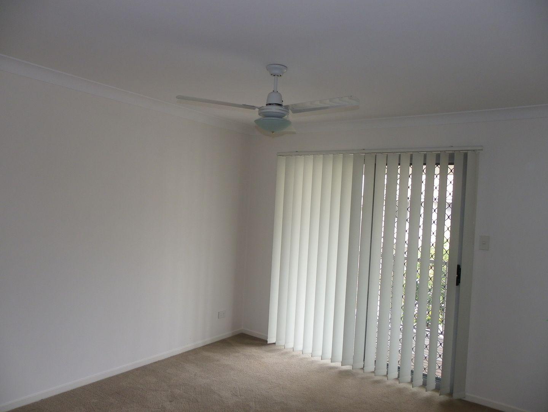 WV/99 Peverell Street, Hillcrest QLD 4118, Image 1