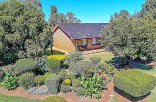 Picture of 1797 Sinclair Road, Tongala VIC 3621