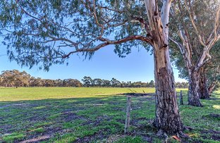 Picture of 98 Rowe Road, Serpentine WA 6125