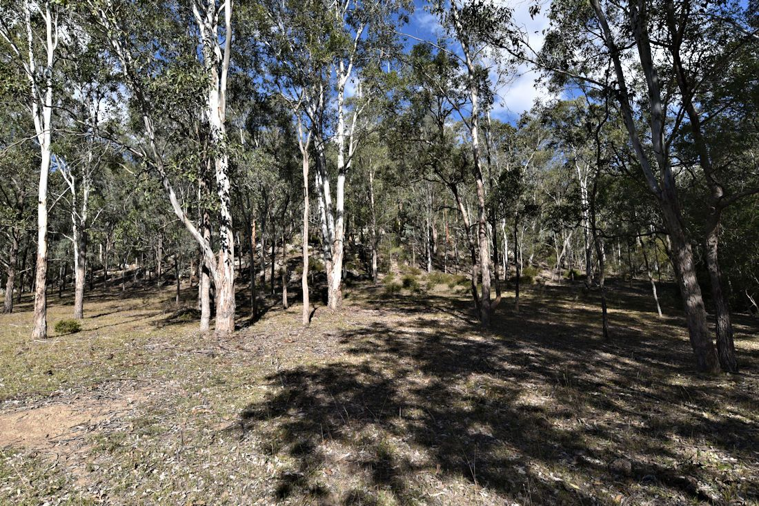 Paynes Crossing NSW 2325, Image 2