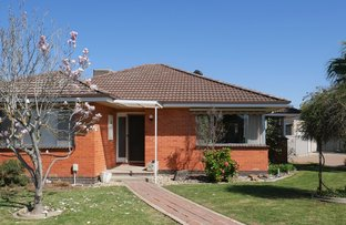 Picture of 22 Oak Street, Shepparton VIC 3630