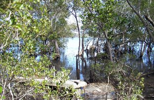Picture of 32 Calm Waters Cres, Mac Leay Island QLD 4184