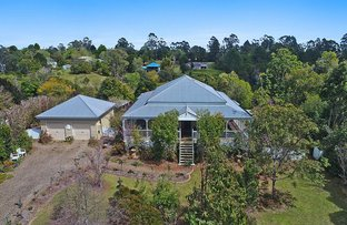 Picture of 16 Strong Court, Montville QLD 4560