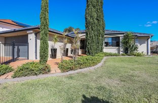 Picture of 51 Azalea Crescent, Calamvale QLD 4116