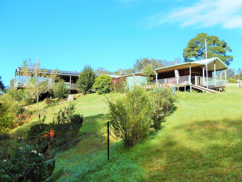 100 Schultz Road, Billys Creek, Dorrigo NSW 2453, Image 0