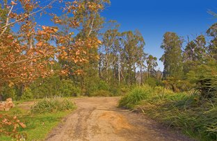 15 Outlook Road, Kinglake VIC 3763
