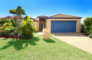 5 Whitewood Place, Molendinar QLD 4214
