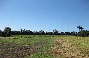Picture of 0 Boyett Road, Mission Beach QLD 4852