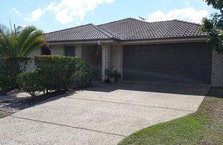 50 Sandheath Place, Ningi QLD 4511