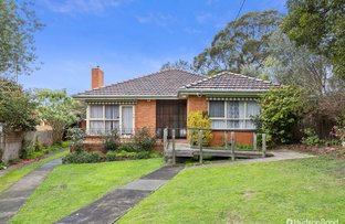 Picture of 14 Pryton Court, Balwyn VIC 3103