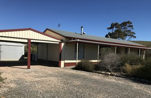 Picture of 3 Sheoak Crescent, Eudunda SA 5374