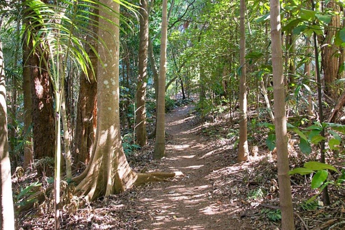 29 Garden of Eden Road, Tomewin NSW 2484, Image 2