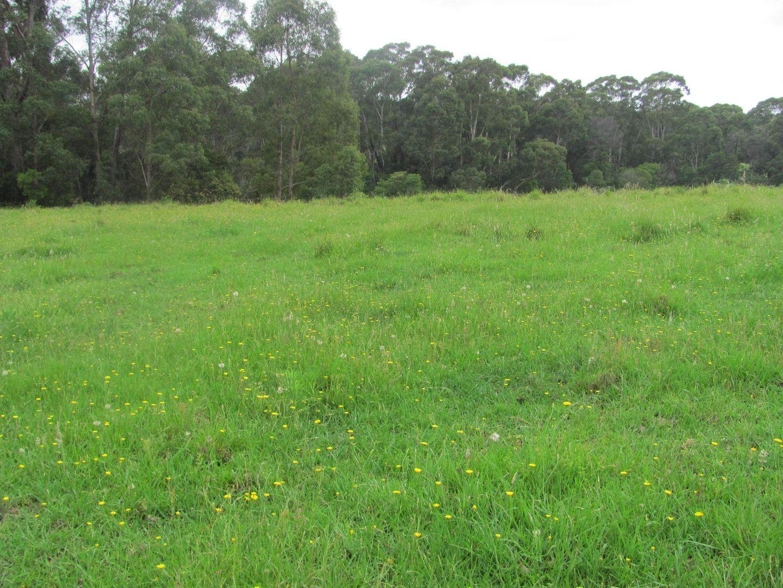 Lot 2, 375 Wamban Road, Moruya NSW 2537, Image 1