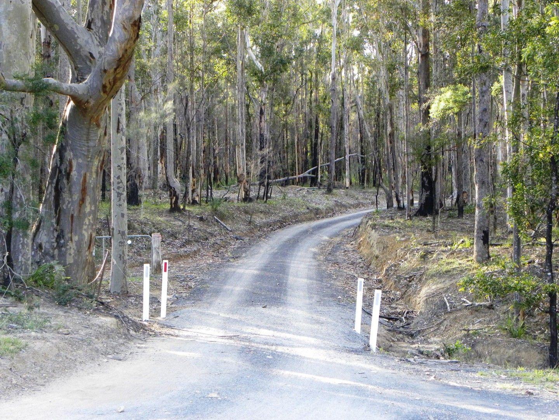 40, Lot 40 Hancocks Creek, Wandandian NSW 2540, Image 0