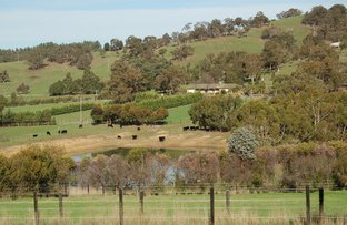 Picture of Kilmore East VIC 3764